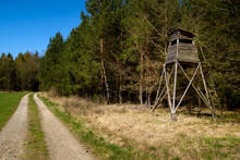 Hunter Stand On The Edge Of The Forest, Spring Season