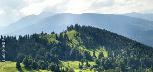 Foto auf Gartenposter Hugel Panorama of fresh green hills in Carpathian mountains in spring sunny day