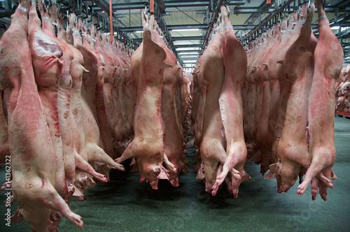 Photo Slaughterhouse, Lagerung der ausgenommenen Tiere