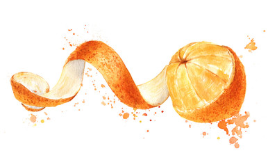 Orange fruit with peeled spiral skin isolated, watercolor
