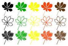 Buckeye Leaf - Color Set, Buck...