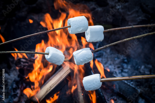 Delicious and sweet marshmallows on stick over the bonfire