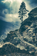 Old Stone Stages Into The Sky. Lonley Tree On The Top. Himalaya Mountains In The Dawn. Dramatic Sky An Majestic Nature Landscape. Trekking In Nepal To Everest Base Camp. Vintage Toning Effect.
