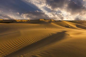 Fototapeta na wymiar Beautiful views of the desert landscape. Gobi Desert. Mongolia.