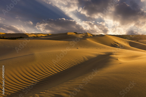 Fototapeta Beautiful views of the desert landscape. Gobi Desert. Mongolia.