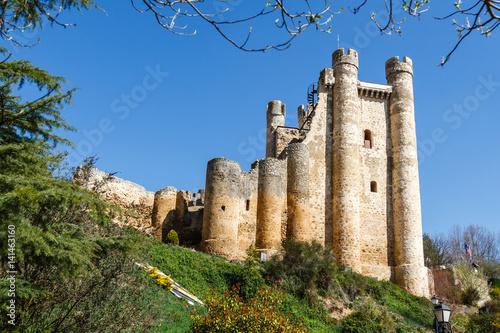 Castillo De Coyanza Valencia De Don Juan Leon Espana Buy This