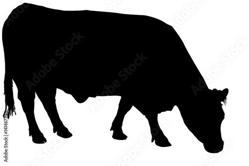 silhouette de vache Fototapet