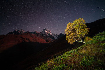Panel Szklany Góry Night view of Ushba mountain with dark starry sky