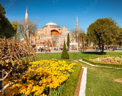 Fototapeta Kolorowa wiosny scena w sułtanu Ahmet parku w Istanbuł, Turcja, Europa.