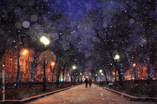 Fototapeten New York winter night in the park