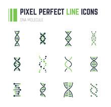 DNA Molecule Icon Set