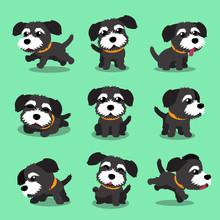 Cartoon Character Black Norfol...