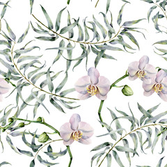 FototapetaWatercolor tropic pattern with eucalyptus and white orchids. Hand painted exotic ornament with branches with leaves isolated on white background. Natural print for design, fabric.