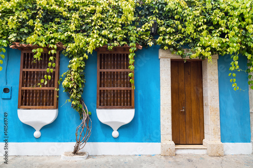 Fotografía  A tree grows along the wall of a colonial style building in Cartagena, Colombia