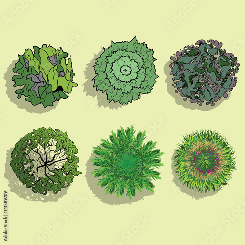 A set of Trees - top view  - Buy this stock vector and