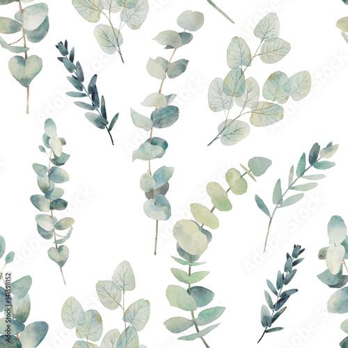Akwarela eukaliptus oddziałów wzór. Ręcznie malowane kwiatowy tekstury z obiektów roślin na białym tle. Naturalna tapeta