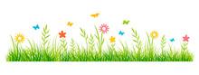 Frühling - Sommer - 4