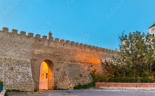 Staande foto Afrika Ancient city walls of Safi, Morocco