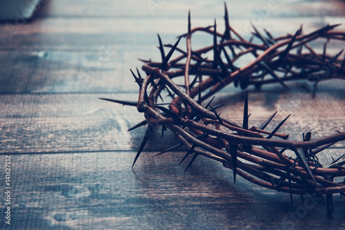 Canvas Print Crown of thorns