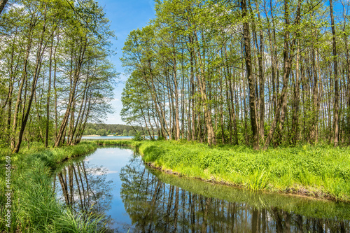 Spring landscape with green forest and river flowing into the lake