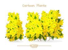 Plantae Series Cartoon Plants: Blooming Yellow Ulex