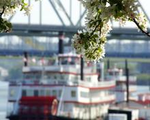 Cincinnati Steamboat
