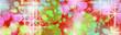 fondo de luces y formas de colores