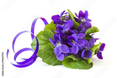 Fotografie, Obraz  Viola odorata -  spring flowers bouquet