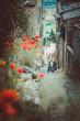 Romantische typisch toskanische Gasse in Montalcino mit roten Klatschmohn und Vespacar