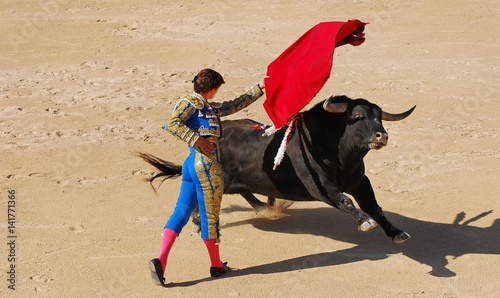 Printed kitchen splashbacks Bullfighting corrida 1
