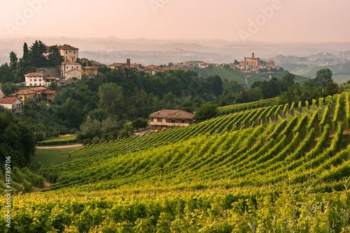Italy, Piedmont, Cuneo district, Langhe, Castiglione Falletto, the vineyards and the castle of Castiglione Falletto