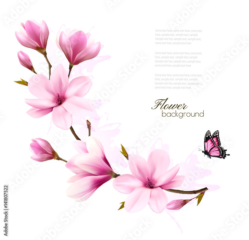 Nature background with blossom branch of pink magnolia and butterfly Canvas Print