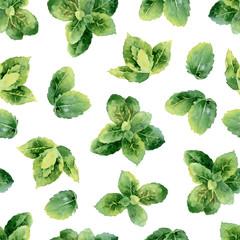 Fototapeta Przyprawy watercolor seamless pattern with mint