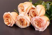 Five Fresh Beige Roses On A Da...