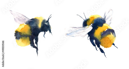 Leinwand Poster Watercolor Bumblebees In Flight Hand Painted Summer Illustration Set isolated on