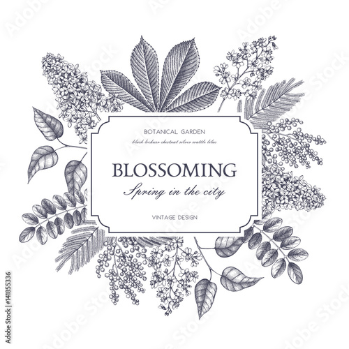 Vector card design with hand drawn blossoming trees. Floral wedding invitation template. Vintage flower illustration Wall mural