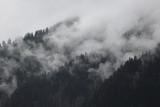 mgliste chmury wznoszące się z ciemnego alpejskiego górskiego lasu - 141859772