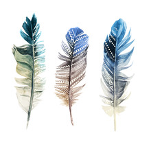 Hand Drawn Watercolor Feathers With Ornaments