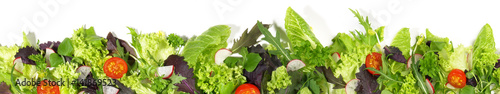Canvas Prints Fresh vegetables Salat - Panorama