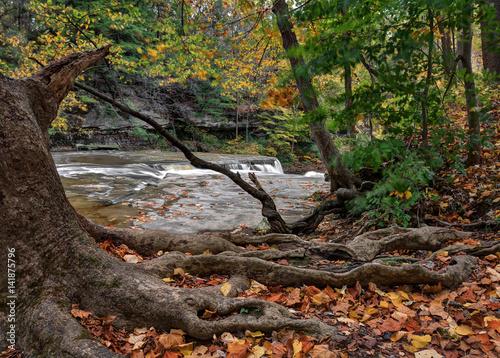 Fotografie, Obraz  Beautiful autumn scene at The Greaet Falls of Tinker's Creek Gorge in Cleveland Ohio