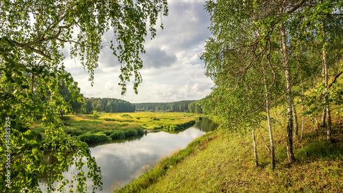 летний пейзаж с березовой рощей и холмом, Россия, Урал
