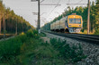 Passenger electric train moving through forest in Riga