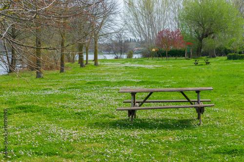 Fotografie, Obraz  Prato fiorito con tavolo da picnic in riva al lago di Bolsena.