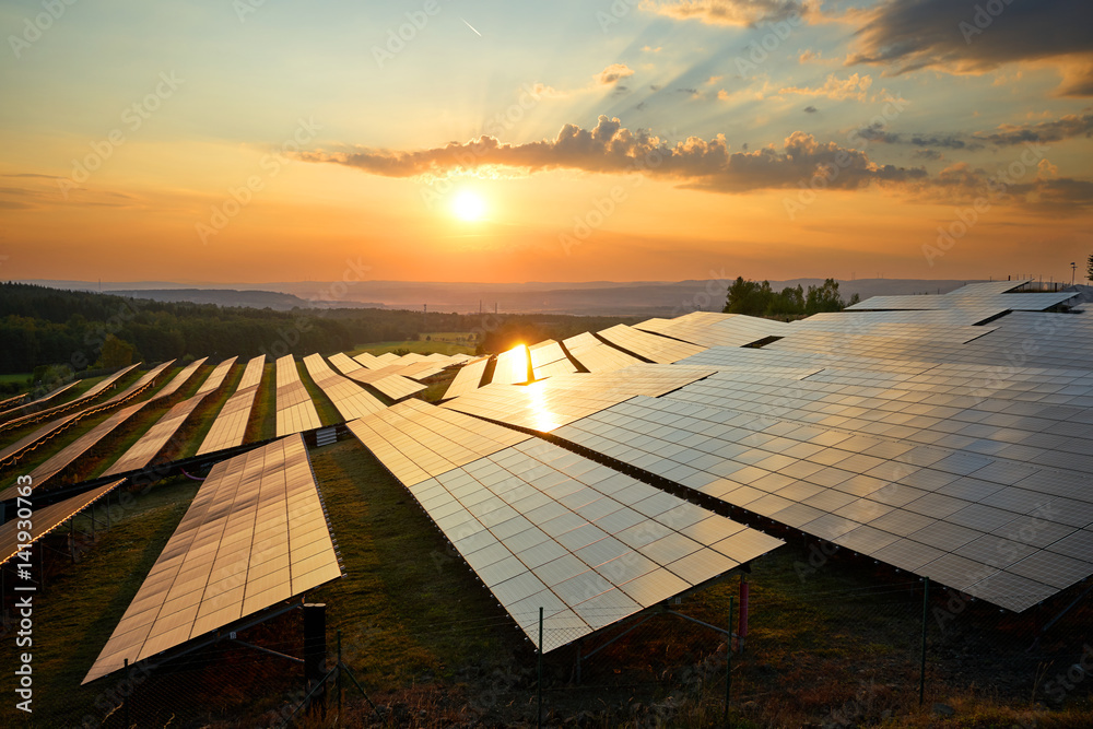 Fototapety, obrazy: Photovoltaic panels of solar power station in the landscape at sunset. View from above.