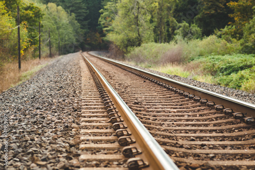 Photo Stands Railroad Train Tracks in Beautiful, Lush Forest