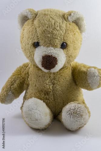 Cute Stuffed Bear #141937516