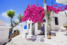 Traditional Greek Street With ...