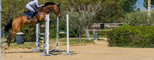 Fotobehang Paardrijden Equitation,saut d'obstacles,compétition.