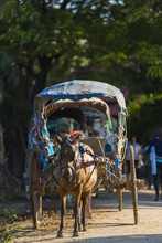 MANDALAY 2 November 2015, Tourists Hire Horse Carriage For Ancient City Tour In Ava, The Ava Kingdom Was The Dominant Kingdom That Ruled Upper Burma (Myanmar) From 1364 To 1555.