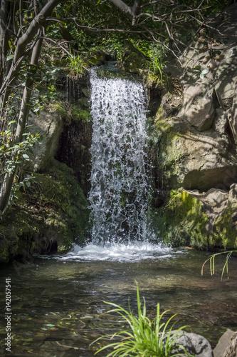 wodospad-w-parku